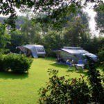 Twee caravans op een groen kampeerveld met veel struiken en bomen omringd.