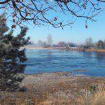 Een bevroren ven, midden in een winters landschap.