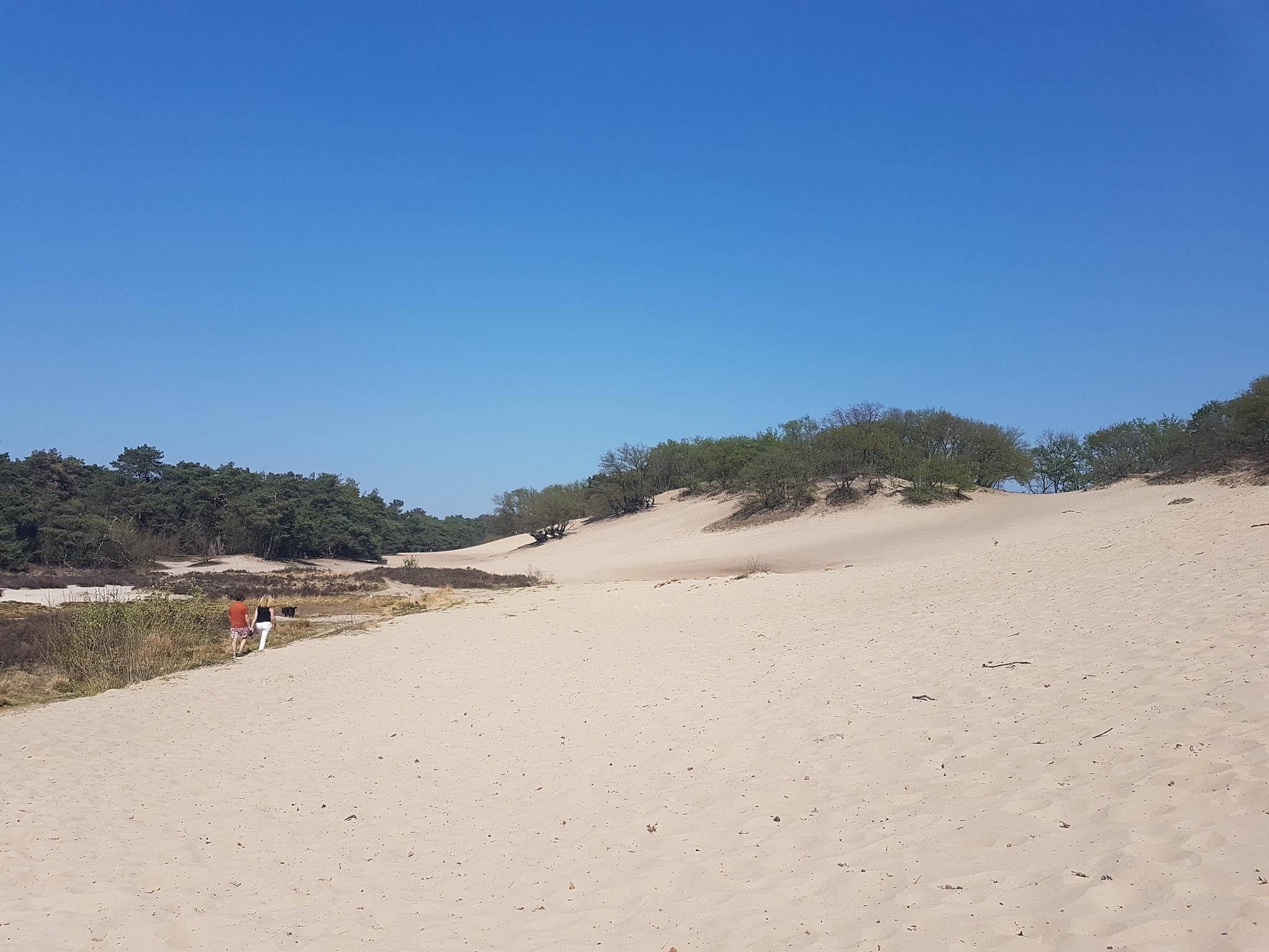 Strakblauwe lucht en een uitgestrekte vlakte met zandduinen