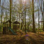 Speeltuin in het bos